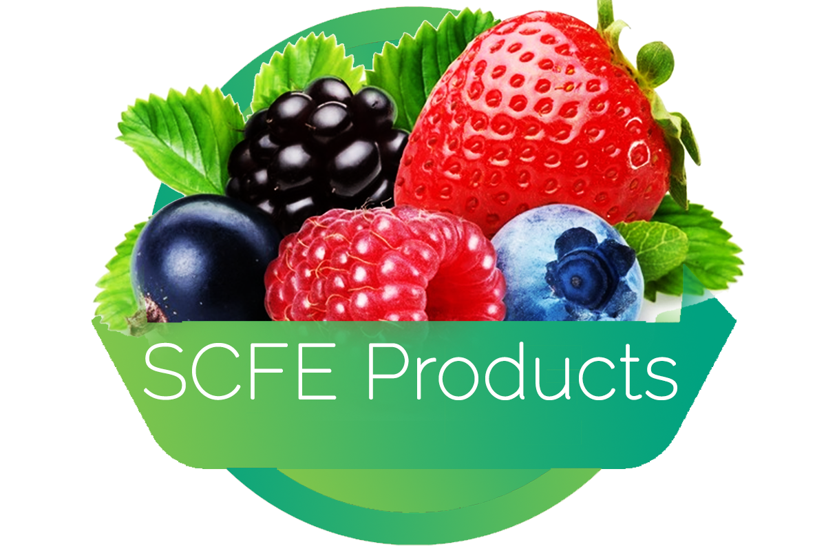 scfeproducts